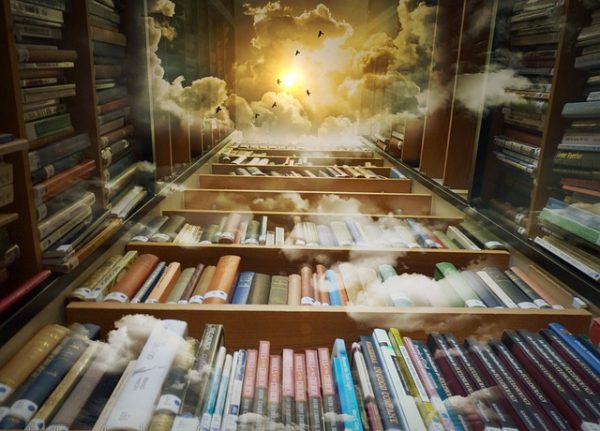 Bookshelves with clouds and birds above