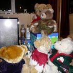 Sue Littleford's bears
